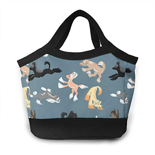 - NOWDIDA Lunch Bag Insulated Lunch Box Tote Bag Lunch Organizer Lunch Holder for Women/Men/Beach/Party/Boating/Office/Fishing/Picnic(Chinese Crested)