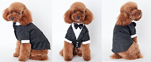 Another Me Dog Shirt Puppy Pet Small Dog Clothes, Stylish Suit Bow Tie Costume, Wedding Shirt Formal Tuxedo with Black Tie, Dog Prince Wedding Bow Tie Suit (Prince Dog Costume)