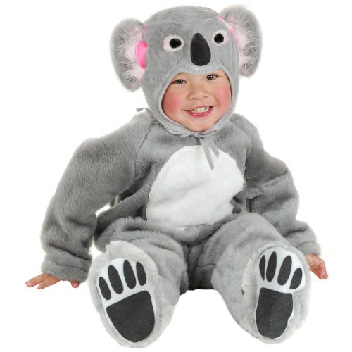 Little Koala Bear Baby Infant Costume - -