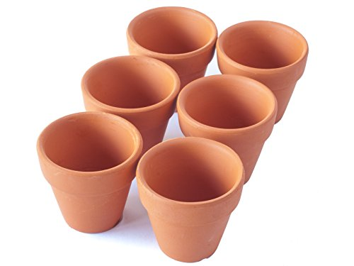 Pennington mini flower pots 2 terra cotta 6 pcs ebay for Small clay flower pots