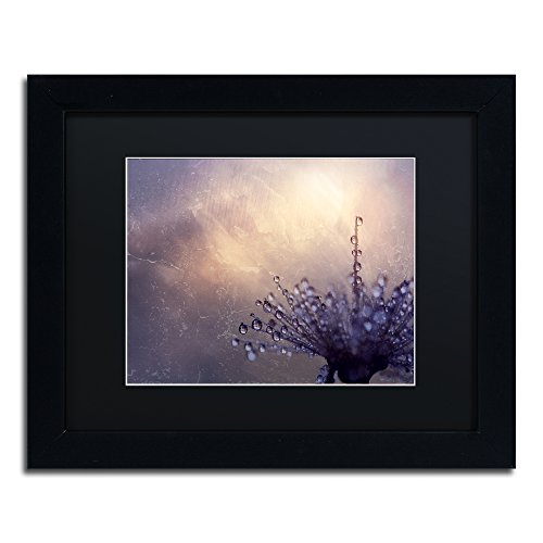picture of Trademark Fine Art All the Good Wishes by Beata Czyzowska Young Black Matte and Black Frame, 11 by 14-Inch
