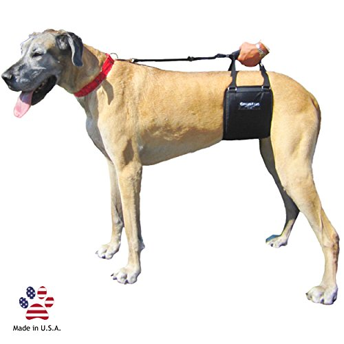 Cheap GingerLead Dog Support & Rehabilitation Harness – Tall Female Sling for Tall, Lean Dogs – Ideal for aging, disabled, or injured dogs needing assistance with their balance and mobility