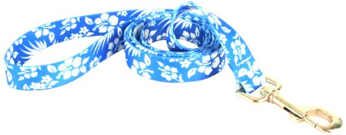 Yellow Dog Design Lead, 3/8-Inch by 60-Inch, Aloha Blue, My Pet Supplies
