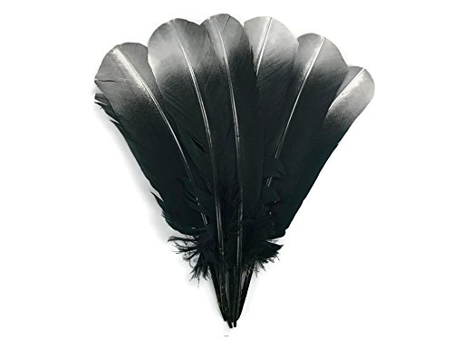 - Turkey Feathers 1/4 Lb - Silver Metallic Spray Paint Tip Tom Turkey Rounds Imitation Eagle Secondary Feathers (bulk)
