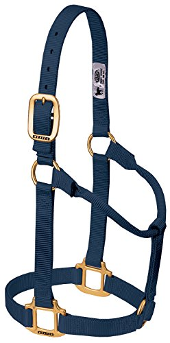 Weaver Leather Original Non-Adjustable Nylon Horse Halter, Small, Navy ()