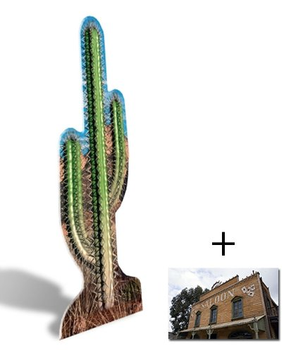 Cactus - Lifesize Cardboard Cutout / Standee / Standup - Includes 8x10 (20x25cm) Star Photo by (Starstills UK) Fan Packs