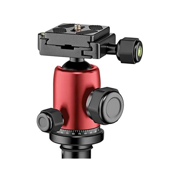 RetinaPix Manfrotto Tripod, Lightweight Element Traveler Big Red