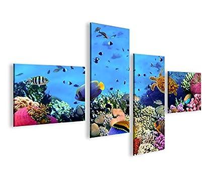 De Imágenes sobre lienzo Acuario Peces Mar Agua Doktor peces tropicales 4L XXL Póster Lienzo Cuadro
