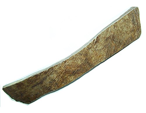 Moose Antler Chew - 9