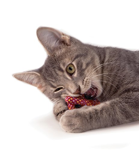Pretzel Dental Health Catnip Toy Fetch and Bat Toy for Cats, Plaque Away Pretzel by Petstages