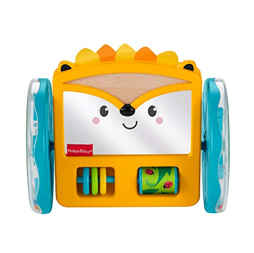 Fisher-Price Espejo de Erizo Juega y arrasta, juguete para bebés + 3 meses (Mattel GJW14)