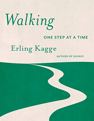 Image of Walking: One Step At a Time