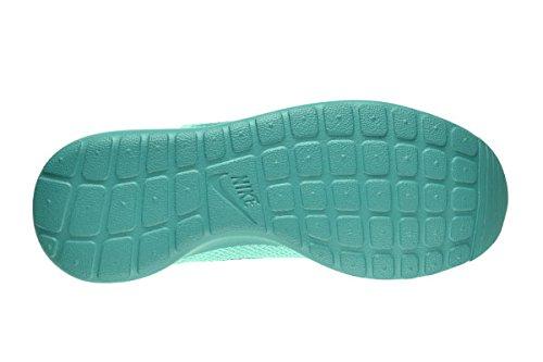 Nike Roshe Kjøre Menns Sko Bleket Turkis / Catalina 511881-301