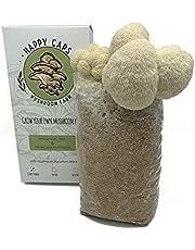 Grow Your Own Mushroom Kit - Lion's Mane - Indoor Growing Kit - by Happy Caps Mushroom Farm