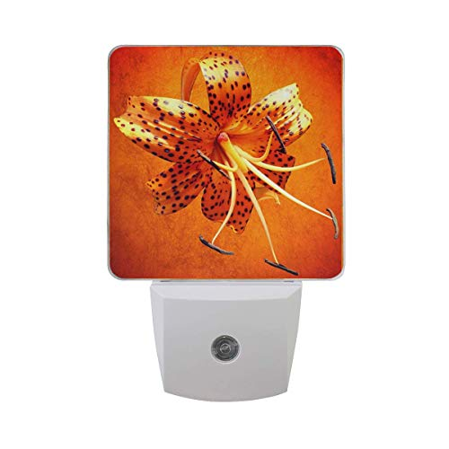 2 Pack Plug-in LED Night Light Lamp with Dusk to Dawn Sensor Decorative for Hallway Kitchen Bedroom Stairs and More[Bashful Tiger Lily Square] (Tiger Lily Lamp)