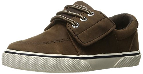 Brown Toddler Footwear (Sperry Ollie Alternative Closure Sneaker (Toddler/Little Kid), Brown Leather, 8.5 M US Toddler)
