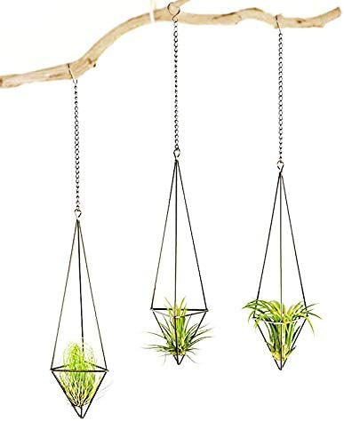 5.5 Cratone Hanging Air Plant Holder Freestanding Gold Metal Display Ornaments Geometric Hanging Planter for Plants Flower Size 5.5 19CM