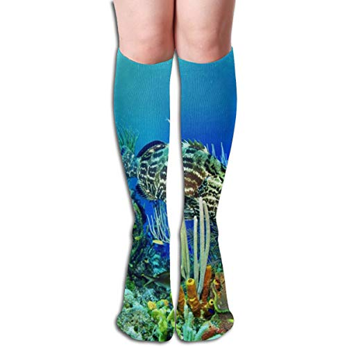 Socks Fish Ocean Special Womens Stocking Decor Sock for sale  Delivered anywhere in USA