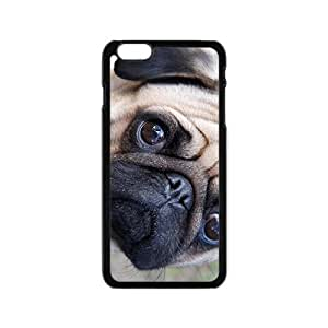 Lucky Curious Dog Hot Seller Stylish Hard Case For Iphone 6