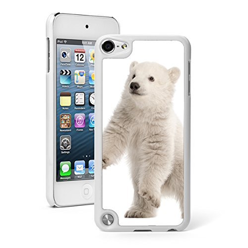 For Apple iPod Touch 5th / 6th Generation Hard Back Case Cover Polar Bear Cub (White) ()