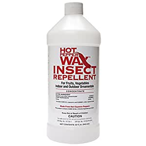 Amazon Com Hot Pepper Wax Concentrate Natural Insect
