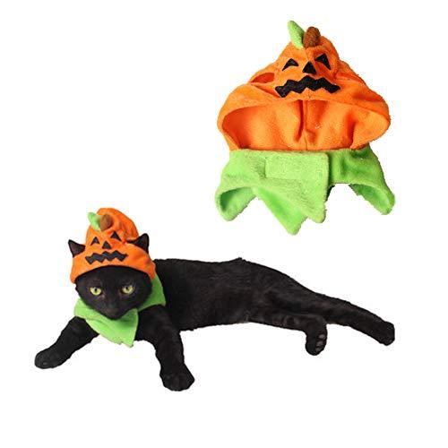 Orgrimmar Halloween Pumpkin Cat Hat Cat Cosplay Costume Cap Kitty Cat Collar Costume ()