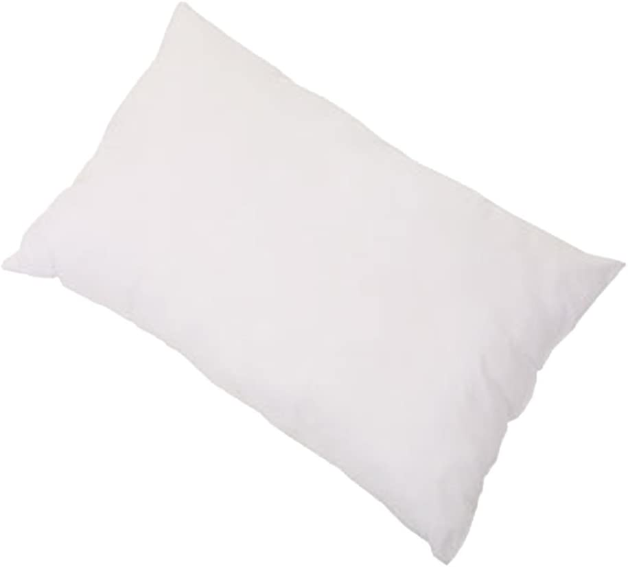 Cuddles Collection Anti Allergy Pillow