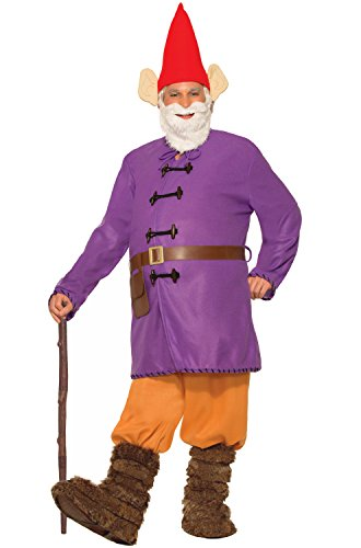 [Forum Novelties Men's Garden Gnome Costume, Multi, Standard] (Gnome Costume Mens)