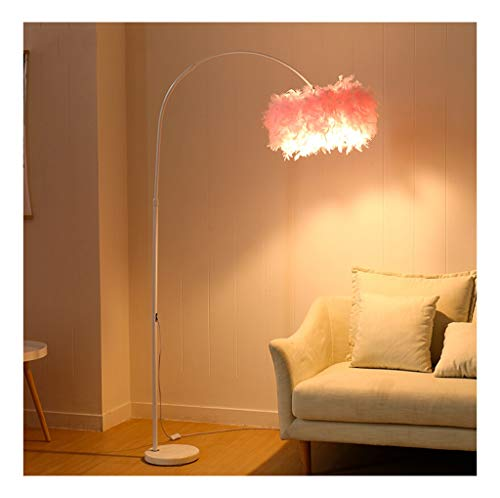 QPSGB Modern Minimalist Feather Floor Lamp, Living Room Study Bedroom Bedside Vertical Standard Lamp Led Remote Control Dimming -4350 Floor lamp (Color : Pink, Wattage : 9w)