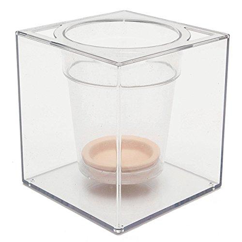 TOOGOO 5inch Transparent Self Watering Pot Deck Planter Flowerpot Home Fish Tank Aquarium by Toogoo