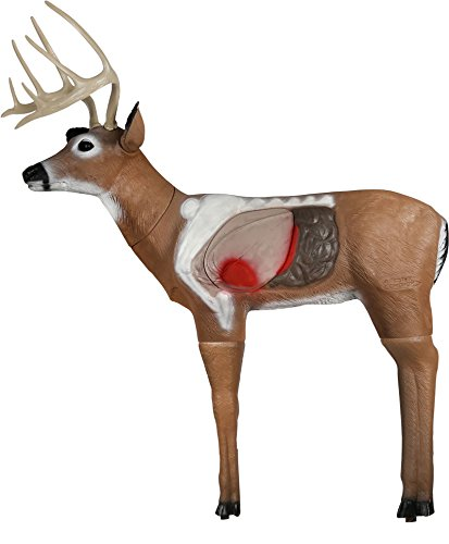 - Delta Archers Choice Real-World Buck 3D Archery Target