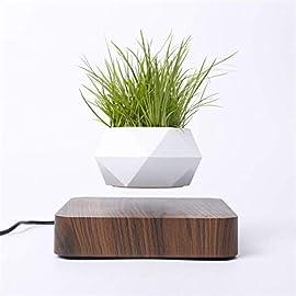 Levitating Air Bonsai Pot