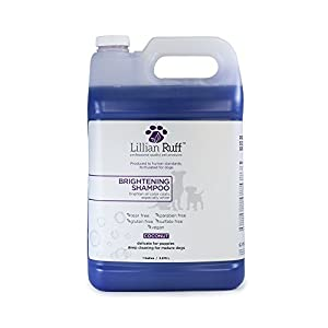 ( 3.8l) – Brightening & Whitening Shampoo For Dogs by Lillian Ruff – Tear Free Coconut Scent With Aloe For Normal, Dry… Click on image for further info.