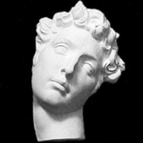 ジュリアーノ・メヂチ半面(人体石膏像)【参考資料・観賞資料 石膏像】BB12729