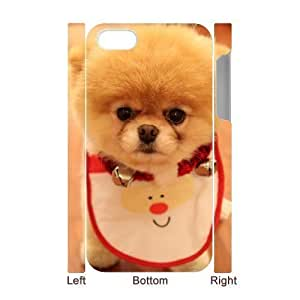 iphone covers 3D Bumper Plastic Case Of Pomeranian customized case For Iphone 5c