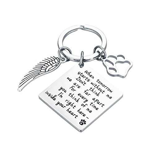 CJ&M Loss of Pet Keychain - Pet Memorial Keychain Jewelry Angel With Paws, Family dog Family cat Family pet Keychain for Pet, Dog Keychain]()