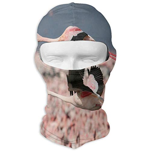 Balaclava Flying Flamingo Love Full Face Masks Ski Headcover Motorcycle Hood For Cycling Sports Snowboard