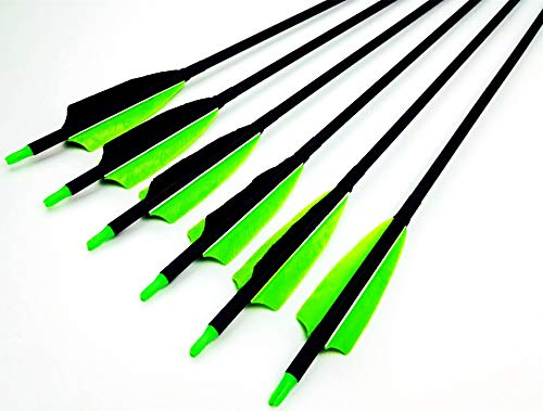 GPP 6PK Archery Carbon 30'' Feather Targeting/Hunting Arrows Field Points Replaceable Tips Recuve Bow & Compound Bow by GPP