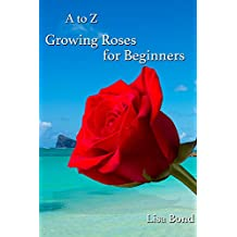 A to Z Growing Roses for Beginners