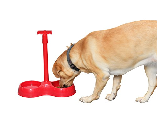 Dog Friend Bowl - ARAD No More Bending Dual Pet Bowl - Perfect Food Station for Those with Limited Mobility - No More Bending or Kneeling When it's Time to Feed Your Beloved Furry Best Friend (Red) by