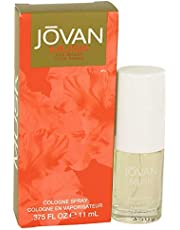 JOVAN MUSK by Jovan Cologne Spray .375 oz / 11 ml (Women)