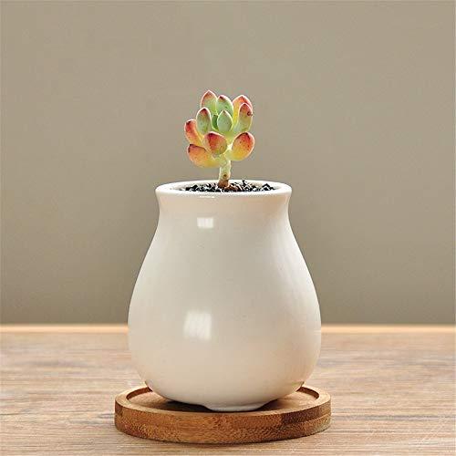 White Porcelain Mini Ceramic Flower Pot Old Pile High Pot Green Plant Container, Fleshy Flower Pot Plant Container, Plant Flower Pot Succulent Vase, Desktop Bonsai Container Decoration
