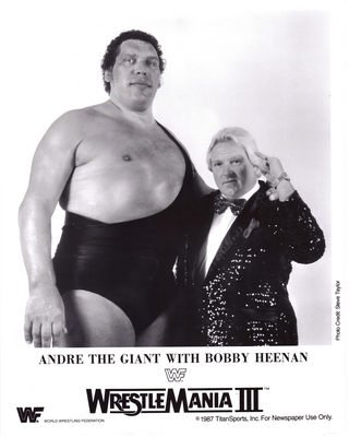 amazon com andre the giant 24x36 banner poster rare fc341709