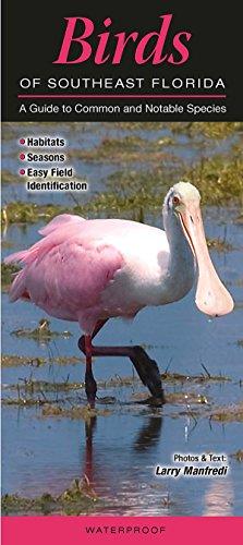 Birds of Southeast Florida: A Guide to Common & Notable ()