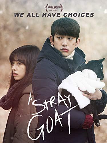 A Stray Goat