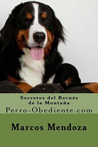 Secretos del Bernes de la Montaña: Perro-Obediente.com (Spanish Edition) [Marcos Mendoza] (Tapa Blanda)