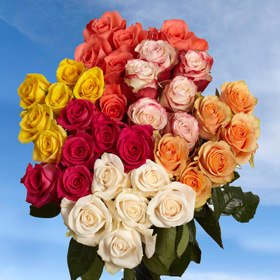GlobalRose 100 Assorted Roses - Flowers With Long Stems and Large Blooms (Long Assorted Stem Roses)