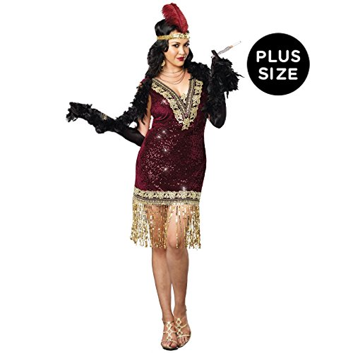 Dreamgirl Women's Plus-Size Sophisticated Lady 1920s Flapper Party Costume, Burgundy, (Flapper Costumes Plus Size)