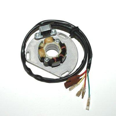 ElectroSport ESL235 Lighting Stator KTM 2-stroke