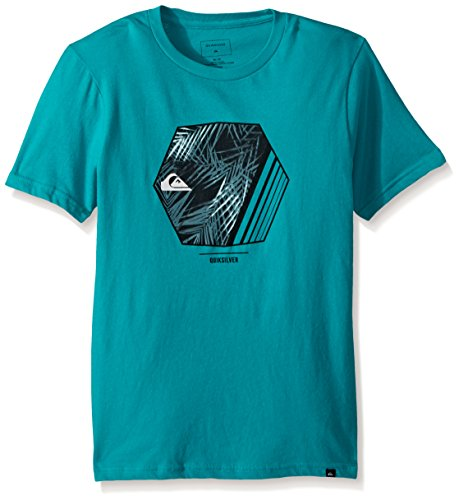 Quicksilver Boys Clothing - Quiksilver Boys Wild Vision Youth TEE, Tropic Green, S/10
